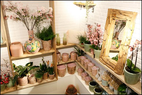 madelief-bloemenwinkel-amsterdam